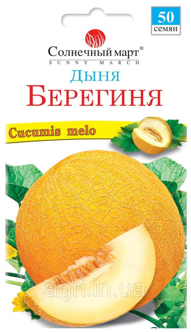 Дыня Берегиня, 50шт.