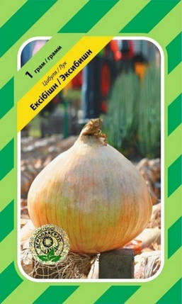 Семена Лук Эксибишн 1 г Bejo Zaden (2146), фото 2