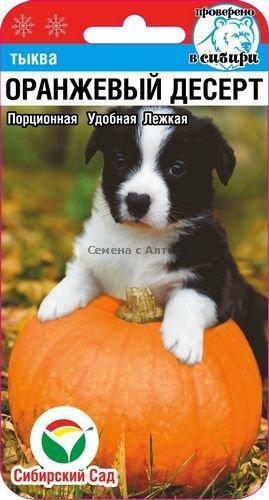 Семена Тыква Оранжевый десерт 5шт   , Сиб.Сад.