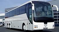 Стекло автобуса лобовое MAN R08 Lions Coach, фото 1