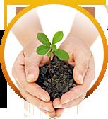 Средства защиты растений