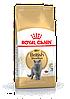 Сухой корм для британцев Royal Canin (Роял Канин) British Shorthair Adult 10кг - Фото