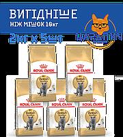 Сухой корм для британцев Royal Canin (Роял Канин) British Shorthair Adult 10кг (2кг х 5шт)