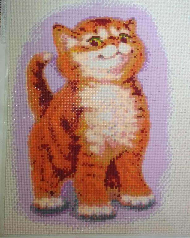 Алмазна мозаїка Котенок рыжик DM-013 від Булах Аріни
