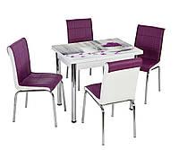 """Раскладной стол обеденный кухонный комплект стол и стулья 3D рисунок """"Сирень в кружке"""" стекло 60*90 Mobilgen"""
