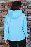 Куртка осенняя стеганная Большого размера, фото 2