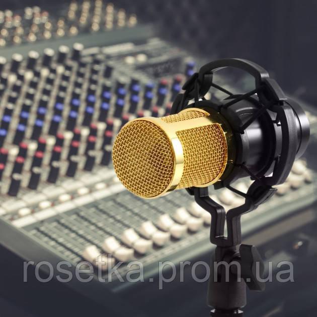Студийный конденсаторный микрофон Music D.J. M-800 со стойкой и ветрозащитой Black/Gold