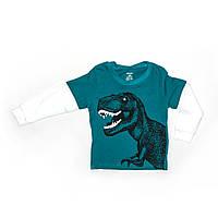 Кофта дитяча для хлопчика Carter's з динозавриком 6.9.18 місяців