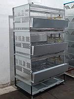 Клетка для бройлеров