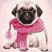 Картины по номерам Розовое настроение/ пленка 40*40   КНО4107