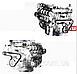 Ремень 6РК-1703 генератора и насоса водяного КАМАЗ 6520 ЕВРО-2 (6-ти ручейковый) (пр-во Rubena) 740.20-1307170, фото 4