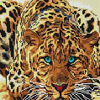 """Алмазная вышивка мозаика 30х30 см на деревянном подрамнике """"Леопард"""" от Белоснежка"""