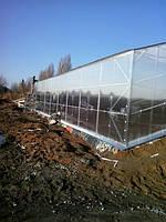 Строительство солнечных вегетариев