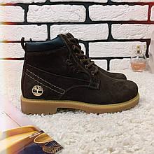 Зимние ботинки (на меху) женские Timberland  13046