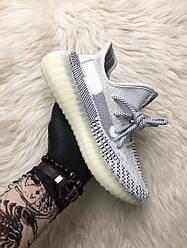 Мужские кроссовки Adidas Yeezy Boost 350 v2 Topen (бело-серые)