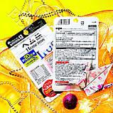 Гем Залізо Heme Iron +Вітаміни Біодобавка Daiso Японія, фото 2