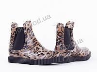 """Резиновая обувь демисезонные женские """"Allshoes"""" #148347. р-р 36-41. Цвет коричневый. Оптом"""