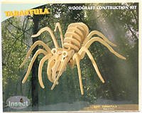 Тарантул - сборная деревянная 3D модель (2 пластины)