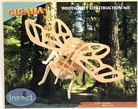 """Цикада"" - деревянная 3D модель (2 пластины)"