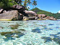 Отдых на Сейшелах (Сейшельских островах) из Днепропетровска / туры на Сейшелы из Днепропетровска ( Маэ, Прасли