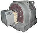 Электродвигатель синхронный СДНЗ-14-36-12 (400 кВт / 500 об\мин 6000 В), фото 2