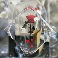 Стабилизированая роза в колбе 7 карат. Подарите любимой сказку!