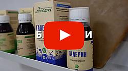 Продукти бджільництва ТМ Апіпродукт. Відео про виробника Апіпродукт.