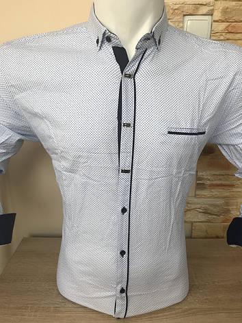 Рубашка длинный рукав AND принт, фото 2