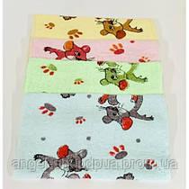 Набор кухонных  махровых полотенец Мишка.Яркие практичные.