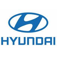 Коврики для HYUNDAI TERRACAN 2001-2007 г.в