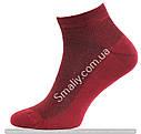 Укороченные носки оптом, сетка (яркие цвета), фото 7