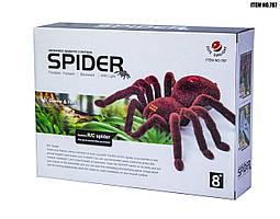 Паук SPIDER Cute Sunlight 20 см на радиоуправлении