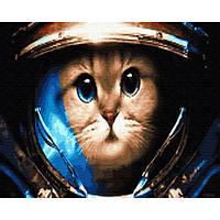 Картина по номерам Кот космонавт, размер 50*40 см, зарисовка полная