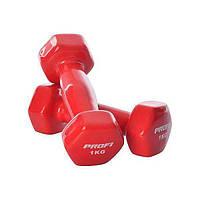 Гантели виниловые для фитнеса 1 кг PROFI M 0289, красная