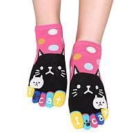 Носки с пальцами Привет Кот JOKEJOLLY 36-40 Розовый