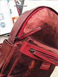 Рюкзак дружин 347