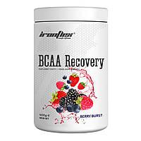 Аминокислоты IronFlex BCAA (BCAA + Glutamine) 2-1-1, 500 g, фото 1