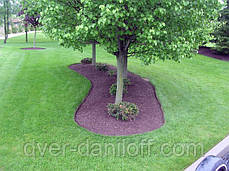 Садовый бордюр Альта-Профиль с перфорацией 0,65х150х9000 мм красный, фото 3