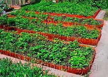 Садовый бордюр Альта-Профиль с перфорацией 0,65х150х9000 мм красный, фото 2