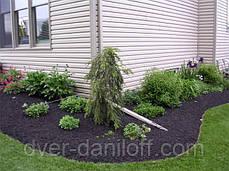 Бордюрная лента садовая Альта-Профиль расширенная 0,5х200х9000 мм коричневый, фото 2