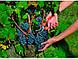 Ножницы P12319 Bahco для сбора урожая, фото 2