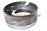 612600030055, 612600030051, VG1560030050 Поршневые кольца на двигатель WD615, WD-615