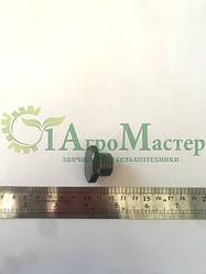 Заглушка Р80 (М20х1,5) с/о гр.S27 (под ключ)