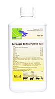 Інтровіт B-комплекс орал - Вітамінний комплекс в розчині – Для орального застосування