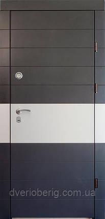 Дизайн входных дверей ХАЙ ТЕК, фото 2