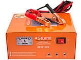 Зарядное устройство Sturm BC12108V, фото 2