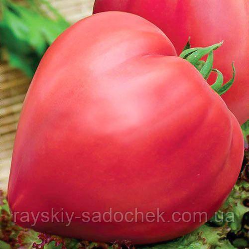 Бичаче серце рожевий 0,1 г GL Seeds