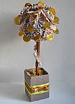 "Сладкий топиарий ""Денежное дерево"", фото 3"