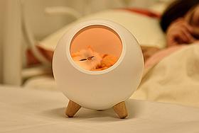 Ночник 3DTOYSLAMP Спящий котик Белый