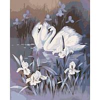 """Картина по номерам Животные, птицы """"Лебединая верность"""" 40х50см KHO2466"""